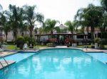 mision-colima-pool.jpg